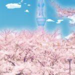 日本の桜と台湾の櫻。