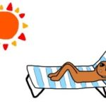 ベランダで日焼け!天サロ!